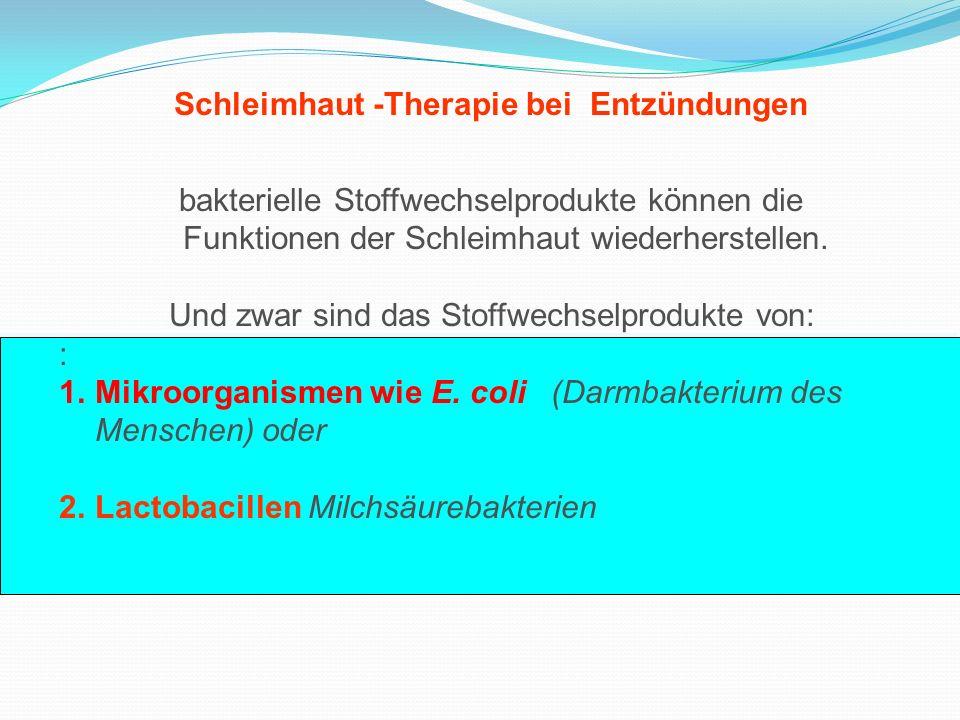 Schleimhaut -Therapie bei Entzündungen bakterielle Stoffwechselprodukte können die Funktionen der Schleimhaut wiederherstellen. Und zwar sind das Stof