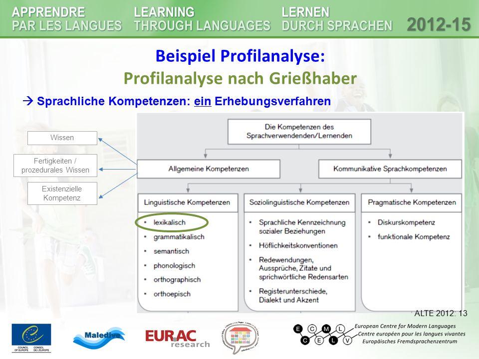 Beispiel Profilanalyse: Profilanalyse nach Grießhaber ALTE 2012: 13 Wissen Fertigkeiten / prozedurales Wissen Existenzielle Kompetenz  Sprachliche Ko