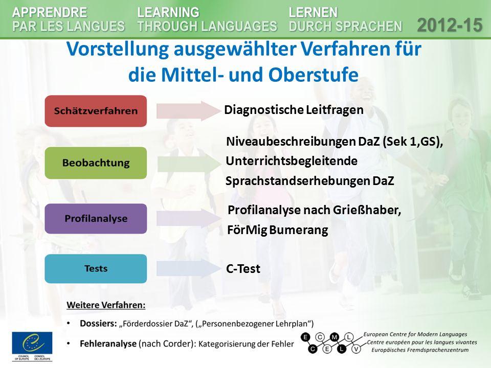 Vorstellung ausgewählter Verfahren für die Mittel- und Oberstufe Diagnostische Leitfragen Niveaubeschreibungen DaZ (Sek 1,GS), Unterrichtsbegleitende