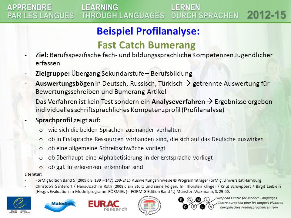 Beispiel Profilanalyse: Fast Catch Bumerang -Ziel: Berufsspezifische fach- und bildungssprachliche Kompetenzen Jugendlicher erfassen -Zielgruppe: Über