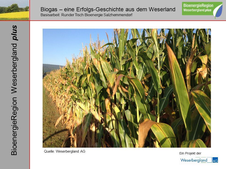 Biogas – eine Erfolgs-Geschichte aus dem Weserland Basisarbeit: Runder Tisch Bioenergie Salzhemmendorf Ein Projekt der BioenergieRegion Weserbergland plus Quelle: Weserbergland AG