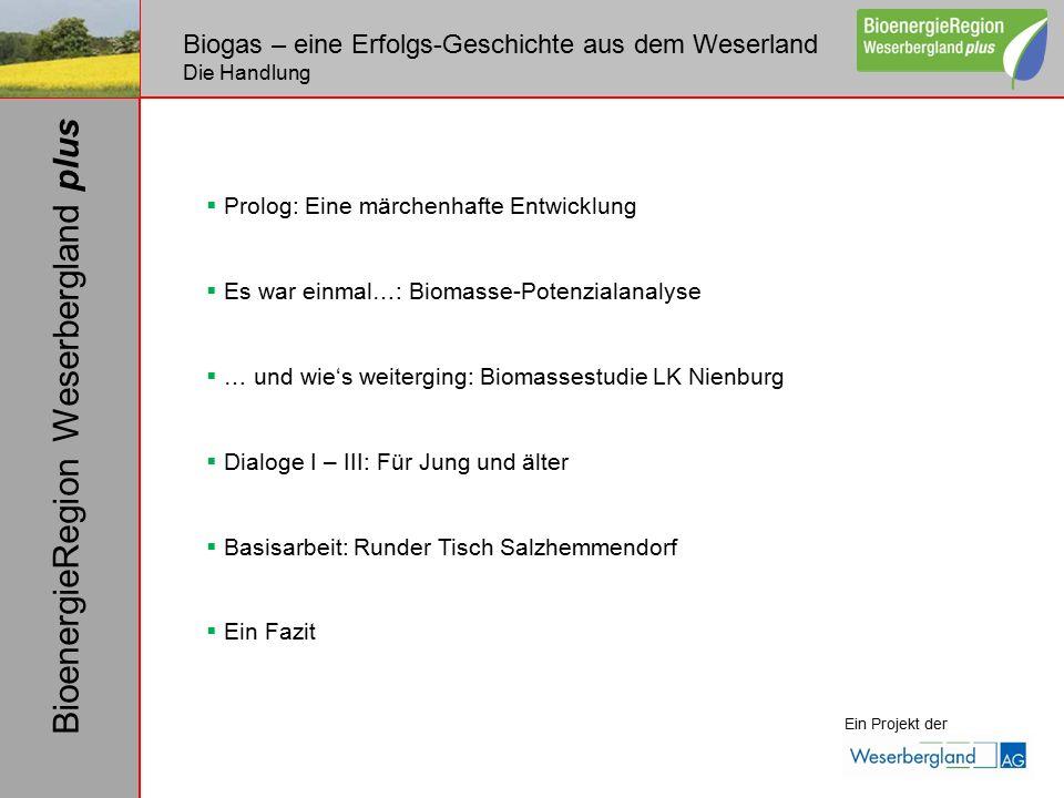  Prolog: Eine märchenhafte Entwicklung  Es war einmal…: Biomasse-Potenzialanalyse  … und wie's weiterging: Biomassestudie LK Nienburg  Dialoge I –