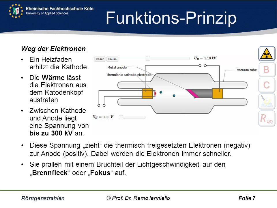 """Funktions-Prinzip Röntgenstrahlen© Prof. Dr. Remo IannielloFolie 6 Röntgenröhre Eine Kathode in der Röhre """"schießt"""" hochenergetische Elektronen auf di"""