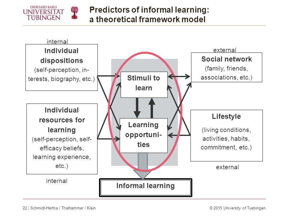 Informal learning Lifestyle (living conditions, activities, habits, commitment, etc.) Social network (family, friends, associations, etc.) Individual