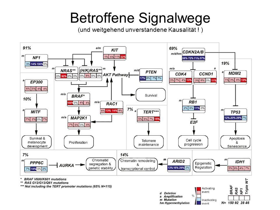 Betroffene Signalwege (und weitgehend unverstandene Kausalität ! )