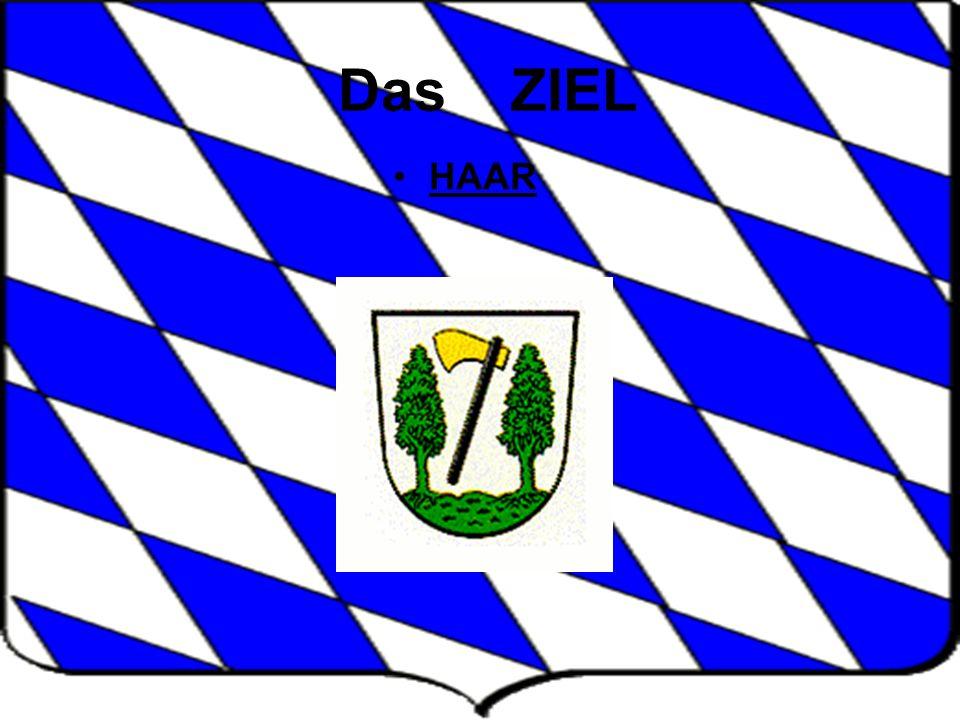 TAG 9 Allianz-Arena