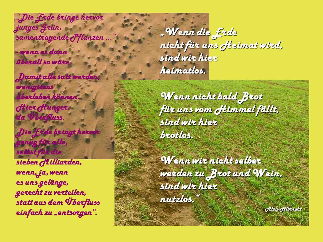 """""""Die Erde bringe hervor junges Grün, samentragende Pflanzen... - wenn es dann überall so wäre."""