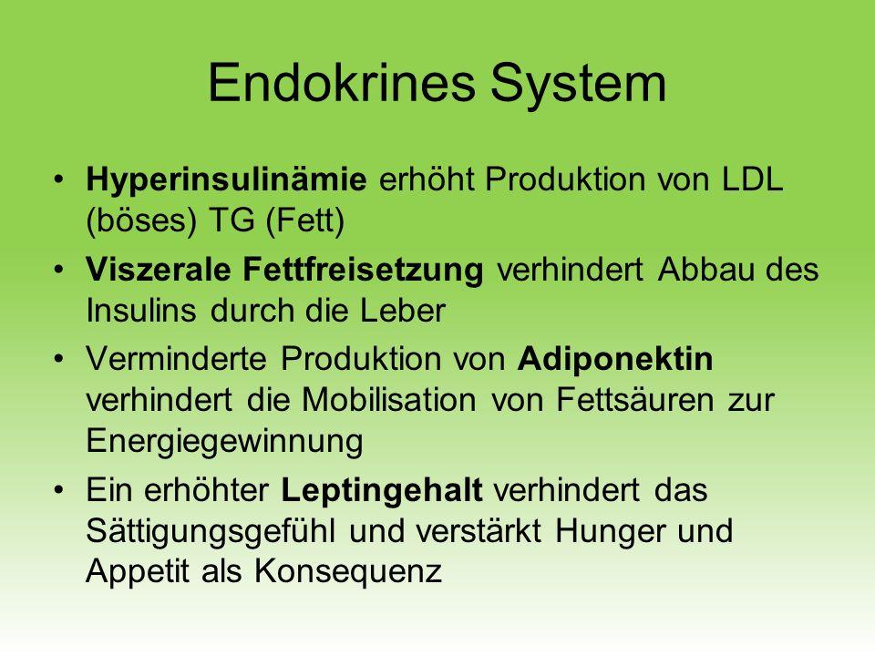 Hyperinsulinämie erhöht Produktion von LDL (böses) TG (Fett) Viszerale Fettfreisetzung verhindert Abbau des Insulins durch die Leber Verminderte Produ
