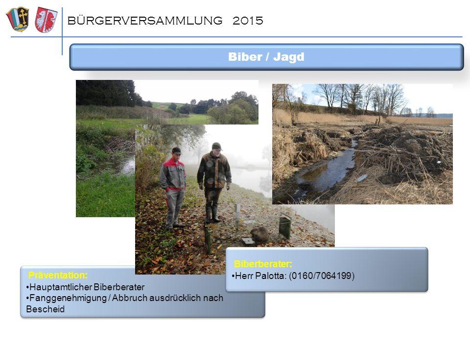BÜRGERVERSAMMLUNG 2015 Biber / Jagd Präventation: Hauptamtlicher Biberberater Fanggenehmigung / Abbruch ausdrücklich nach Bescheid Präventation: Haupt