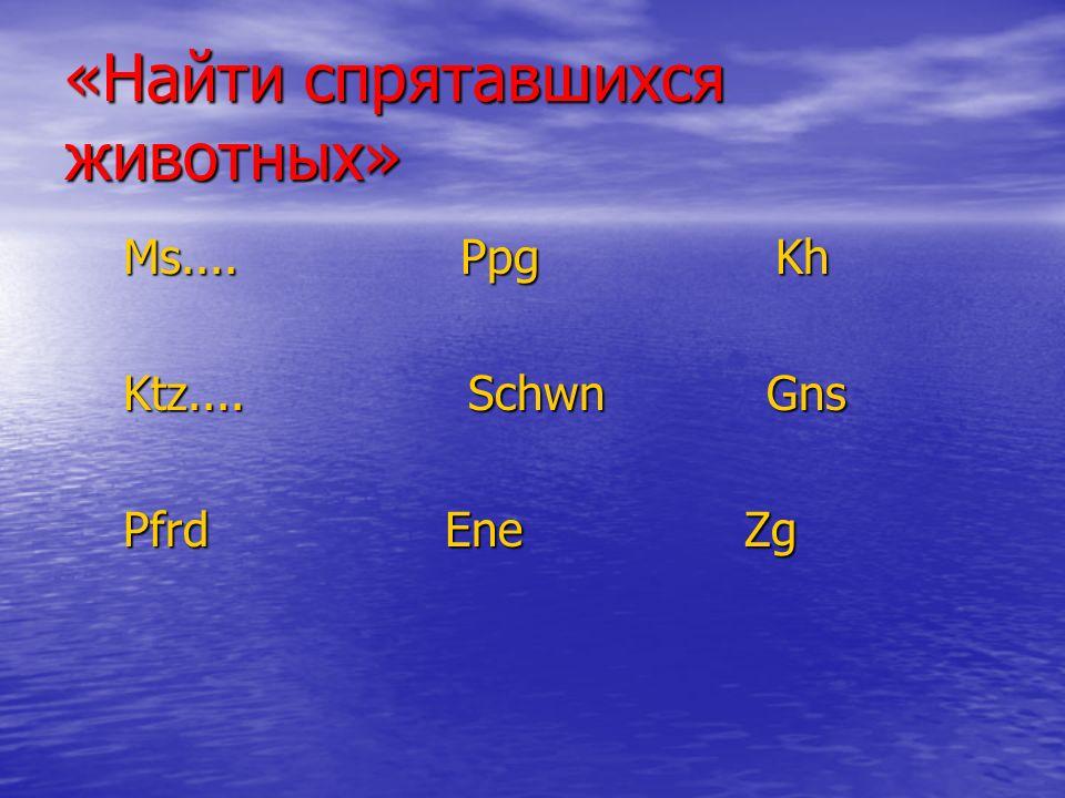 «Найти спрятавшихся животных» Ms.... Ppg Kh Ms....
