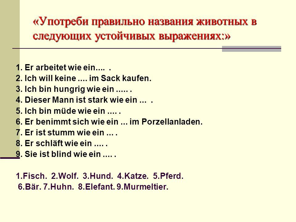 «Кто быстрее составит пословицу» Yeder Vögel lobt sein Nest.