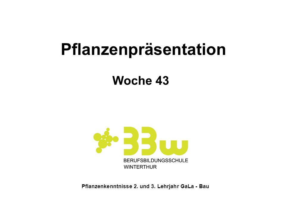 Pflanzenkenntnisse 2. und 3. Lehrjahr GaLa - Bau Pflanzenpräsentation Woche 43