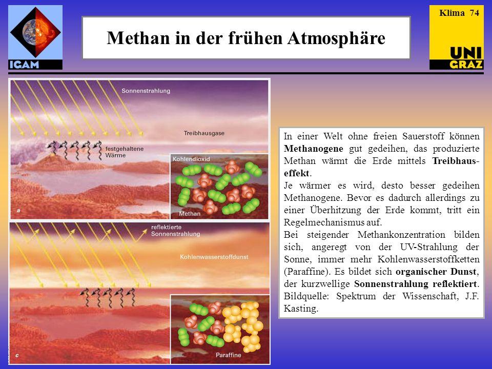 Methan in der frühen Atmosphäre In einer Welt ohne freien Sauerstoff können Methanogene gut gedeihen, das produzierte Methan wärmt die Erde mittels Treibhaus- effekt.