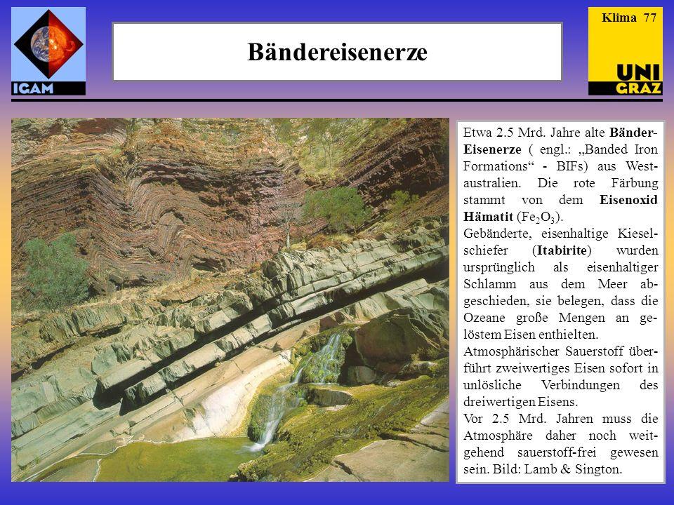 """Bändereisenerze Etwa 2.5 Mrd. Jahre alte Bänder- Eisenerze ( engl.: """"Banded Iron Formations"""" - BIFs) aus West- australien. Die rote Färbung stammt von"""