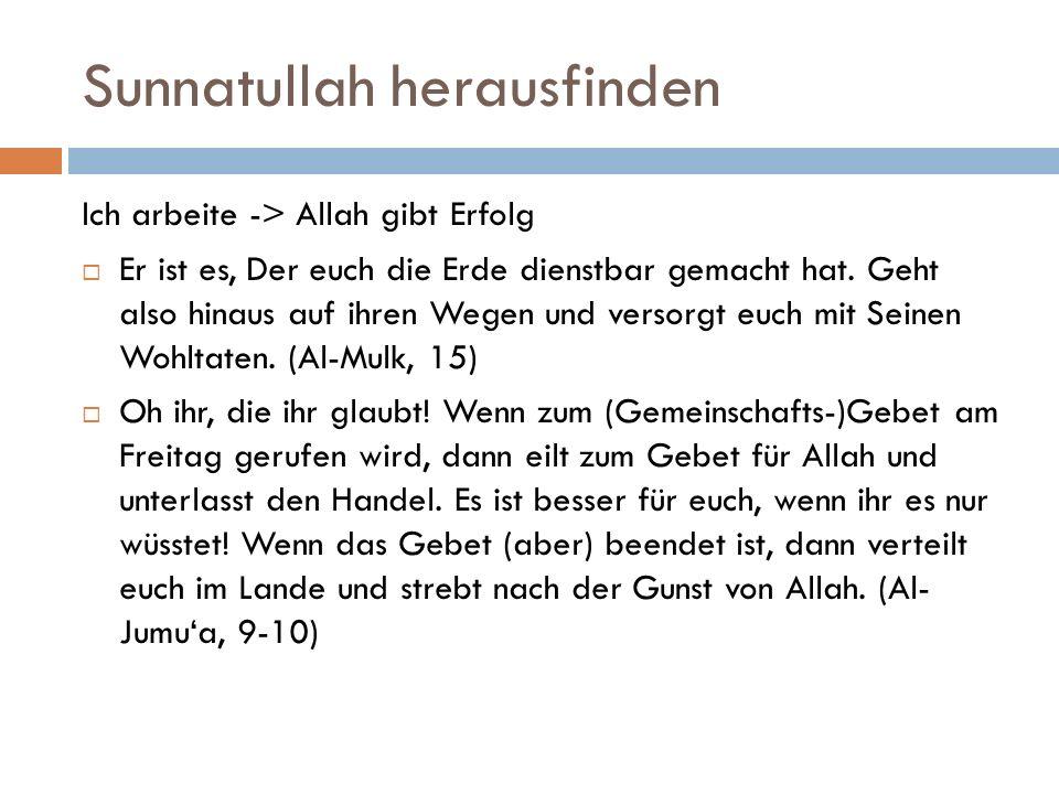 Sunnatullah herausfinden Ich arbeite -> Allah gibt Erfolg  Er ist es, Der euch die Erde dienstbar gemacht hat. Geht also hinaus auf ihren Wegen und v