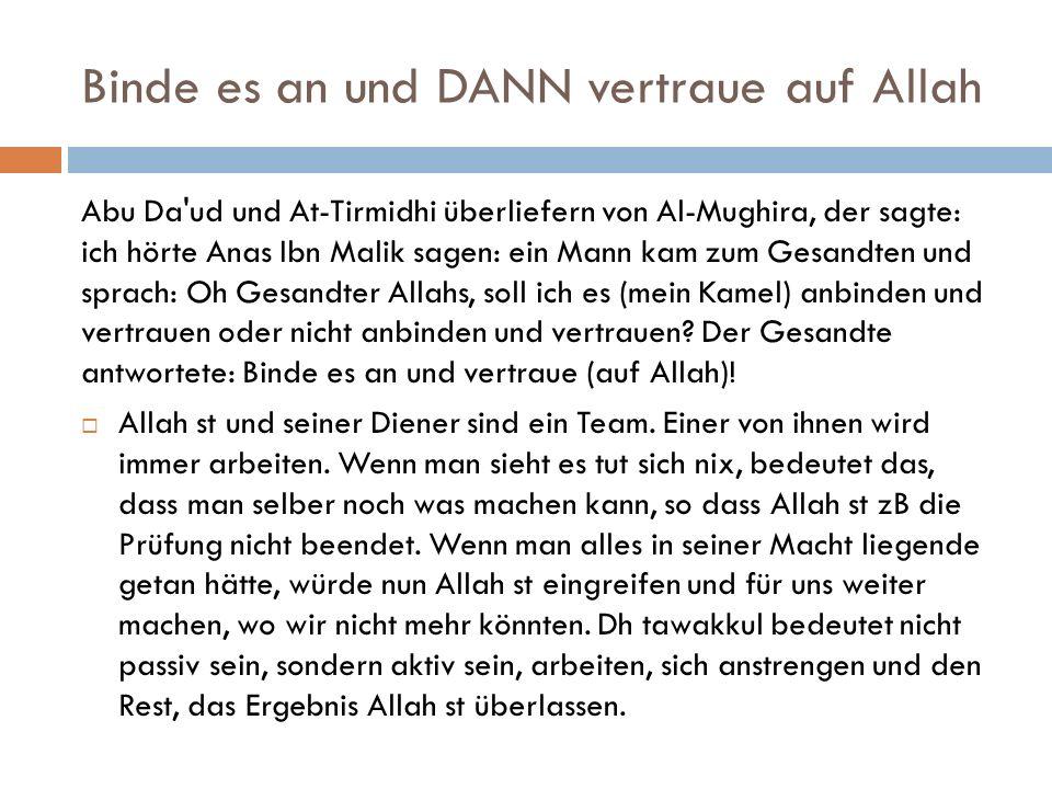 Binde es an und DANN vertraue auf Allah Abu Da'ud und At-Tirmidhi überliefern von Al-Mughira, der sagte: ich hörte Anas Ibn Malik sagen: ein Mann kam