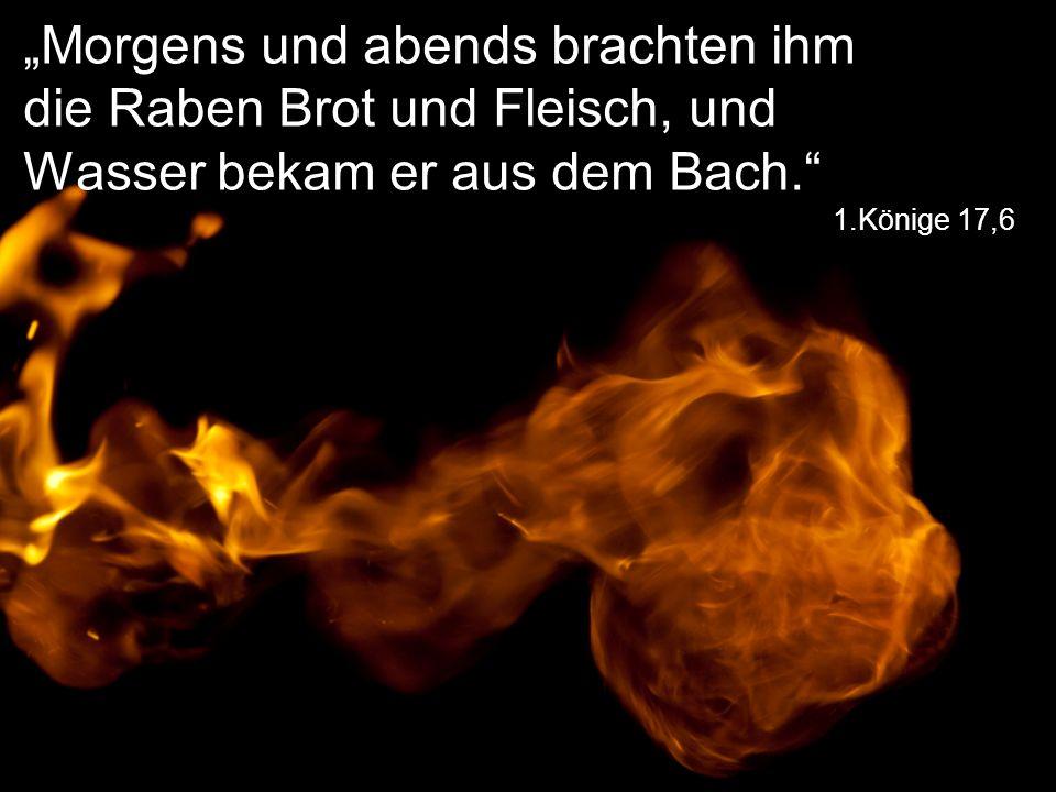 """1.Könige 17,6 """"Morgens und abends brachten ihm die Raben Brot und Fleisch, und Wasser bekam er aus dem Bach."""""""