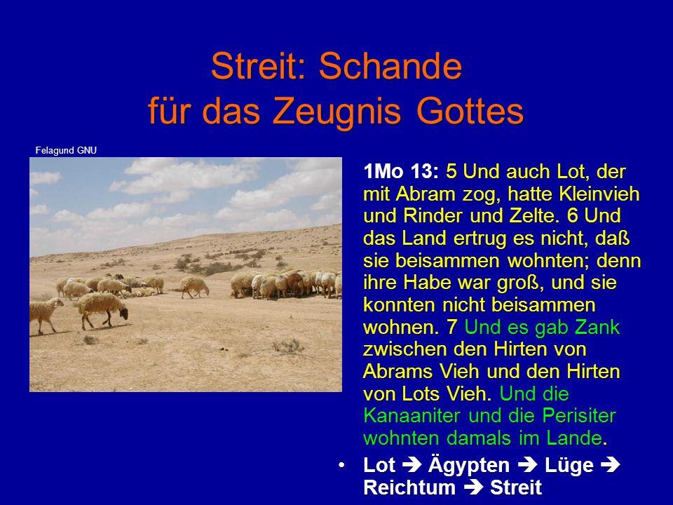 Streit: Schande für das Zeugnis Gottes 1Mo 13: 5 Und auch Lot, der mit Abram zog, hatte Kleinvieh und Rinder und Zelte. 6 Und das Land ertrug es nicht