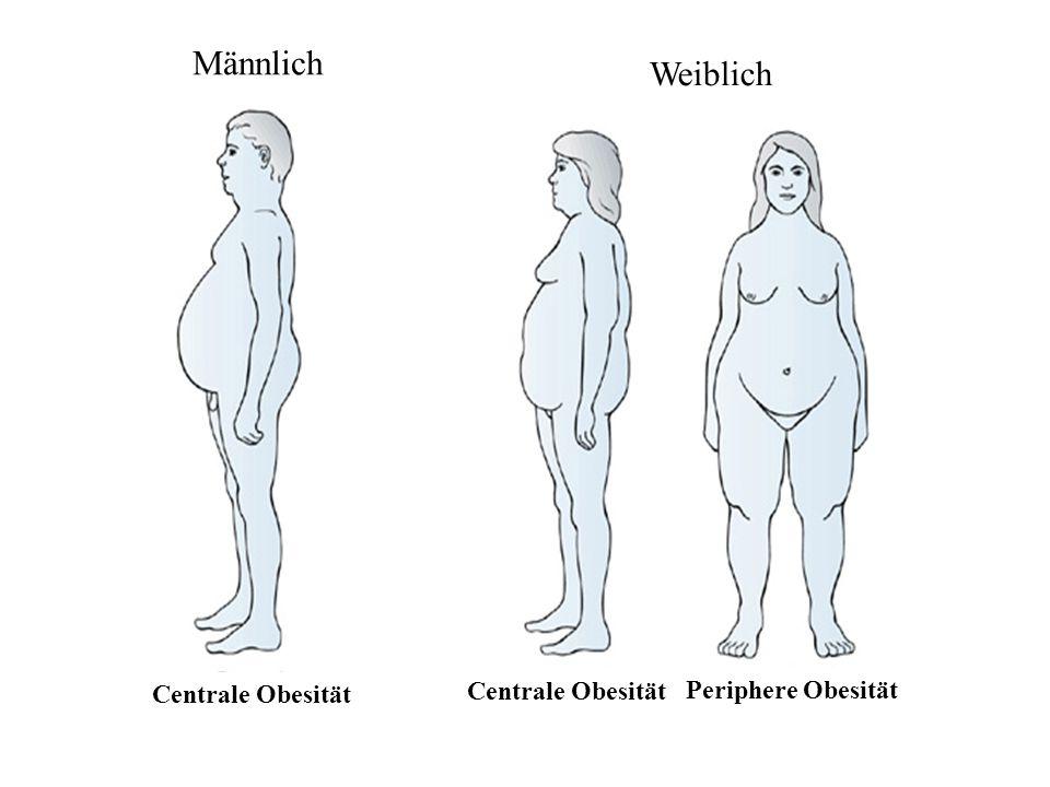 Männlich Weiblich Centrale Obesität Periphere Obesität Centrale Obesität