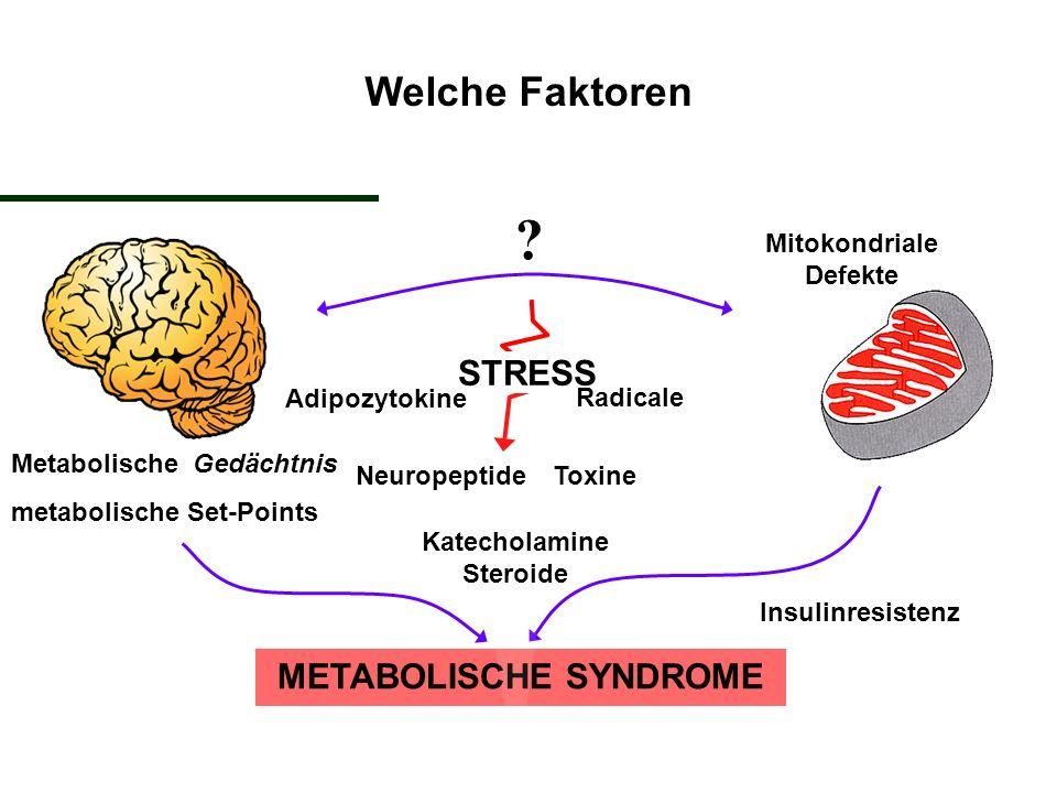 Mitokondriale Defekte METABOLISCHE SYNDROME ? Metabolische Gedächtnis metabolische Set-Points Insulinresistenz STRESS Adipozytokine Radicale Toxine Ne