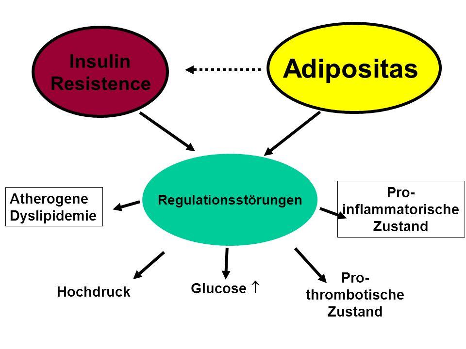 Insulin Resistence Regulationsstörungen Hochdruck Atherogene Dyslipidemie Glucose  Pro- thrombotische Zustand Pro- inflammatorische Zustand Adiposita
