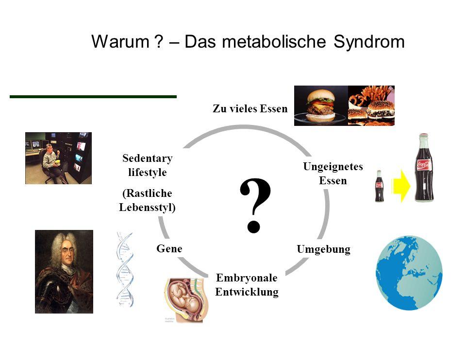 World Health Organization Klinische Voraussetzungen für das metabolische Syndrom  Insulin Resistance (T2DM, IFG, IGT) + 2 veitere Symptome  BP > 140/90 mmHg oder anti-HT Medikation  Plasma TG > 1.7 mmol/L  HDL-C < 1 mmol/L (M); < 1.3 mmol/L (F)  BMI > 30 kg/m 2 oder W/H >0.9 (M) or > 0.85 (F)  Urin albumin > 20 mg/min or Alb/Cr > 30 mg/g