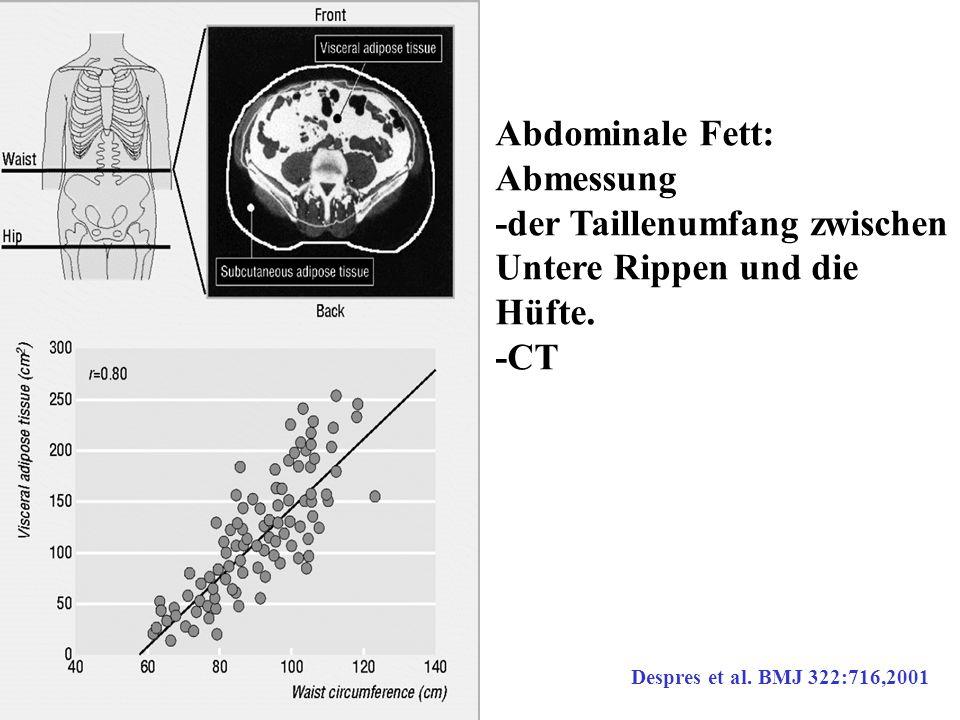 Abdominale Fett: Abmessung -der Taillenumfang zwischen Untere Rippen und die Hüfte. -CT Despres et al. BMJ 322:716,2001