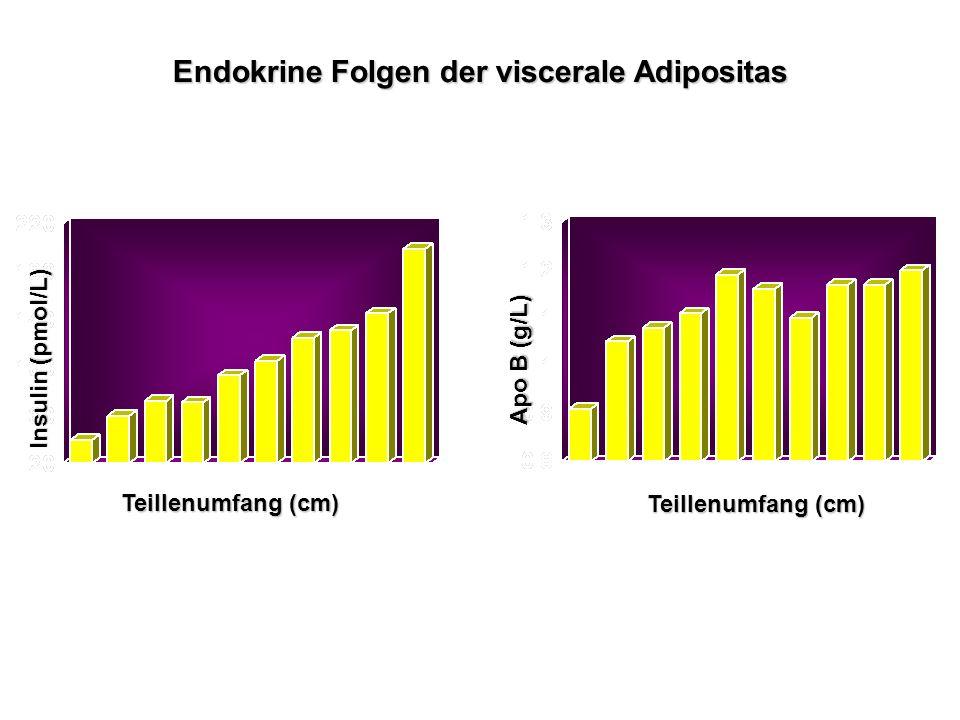 Endokrine Folgen der viscerale Adipositas Teillenumfang (cm) Insulin (pmol/L) Apo B (g/L) Teillenumfang (cm)