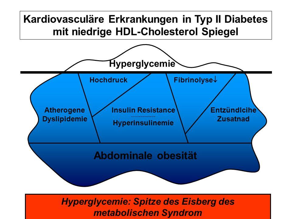 Kardiovasculäre Erkrankungen in Typ II Diabetes mit niedrige HDL-Cholesterol Spiegel Hyperglycemie: Spitze des Eisberg des metabolischen Syndrom Abdom