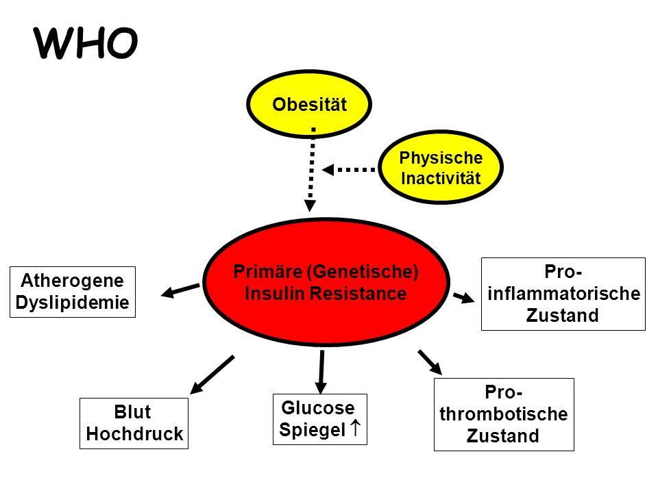Obesität Primäre (Genetische) Insulin Resistance Blut Hochdruck Atherogene Dyslipidemie Glucose Spiegel  Pro- thrombotische Zustand Pro- inflammatori