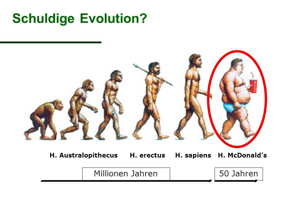H. erectusH. sapiensH. McDonald'sH. Australopithecus Millionen Jahren50 Jahren Schuldige Evolution?