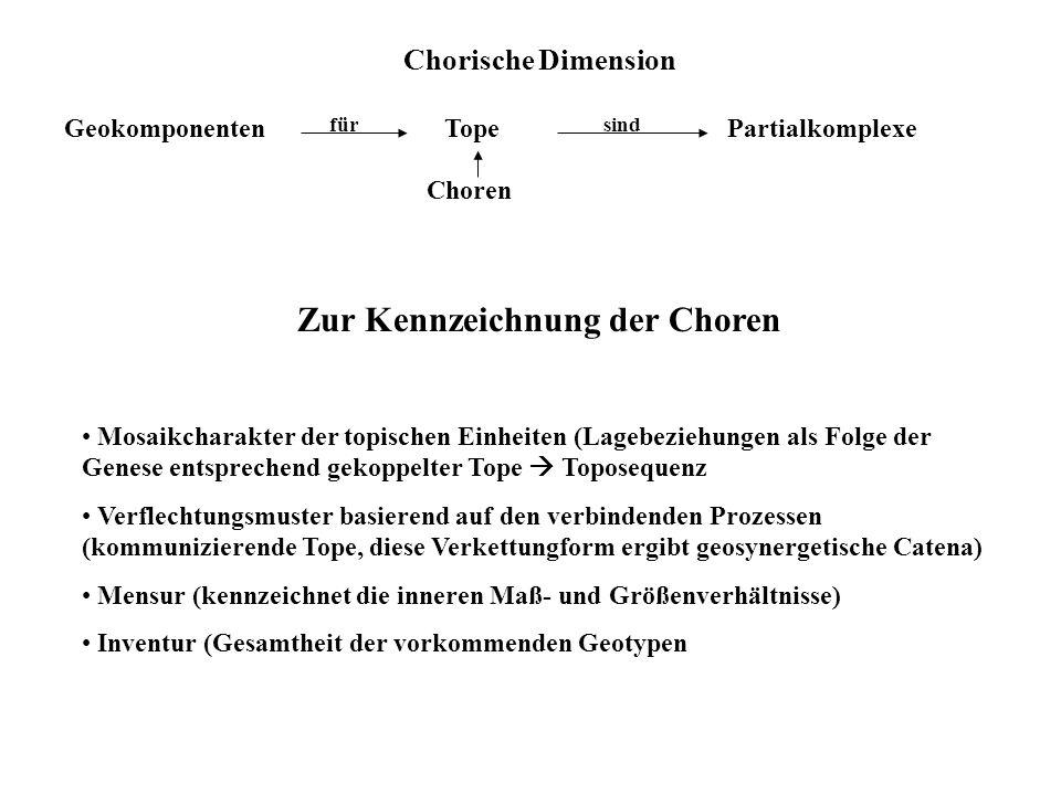 Chorische Dimension GeokomponentenTopePartialkomplexe Choren fürsind Zur Kennzeichnung der Choren Mosaikcharakter der topischen Einheiten (Lagebeziehu