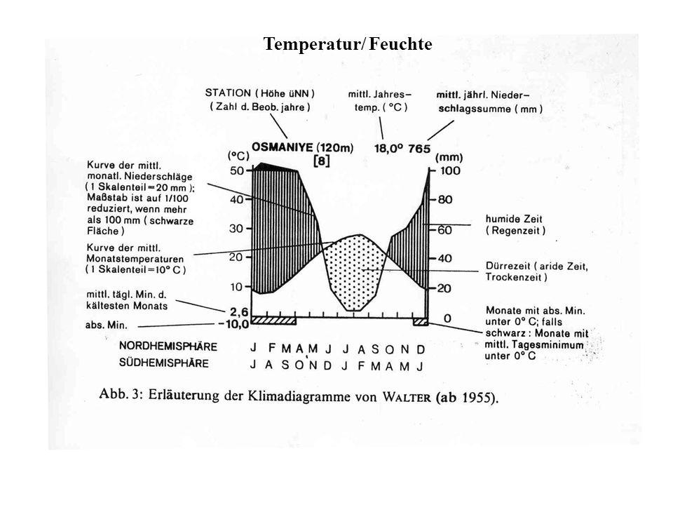 Temperatur/ Feuchte