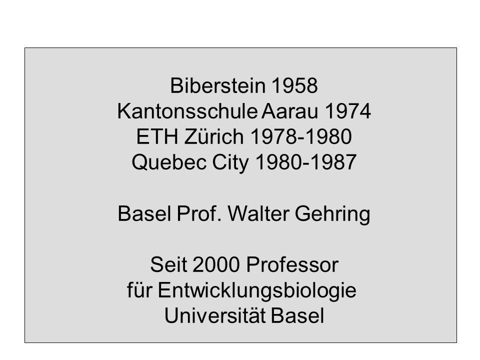 Biberstein 1958 Kantonsschule Aarau 1974 ETH Zürich 1978-1980 Quebec City 1980-1987 Basel Prof.