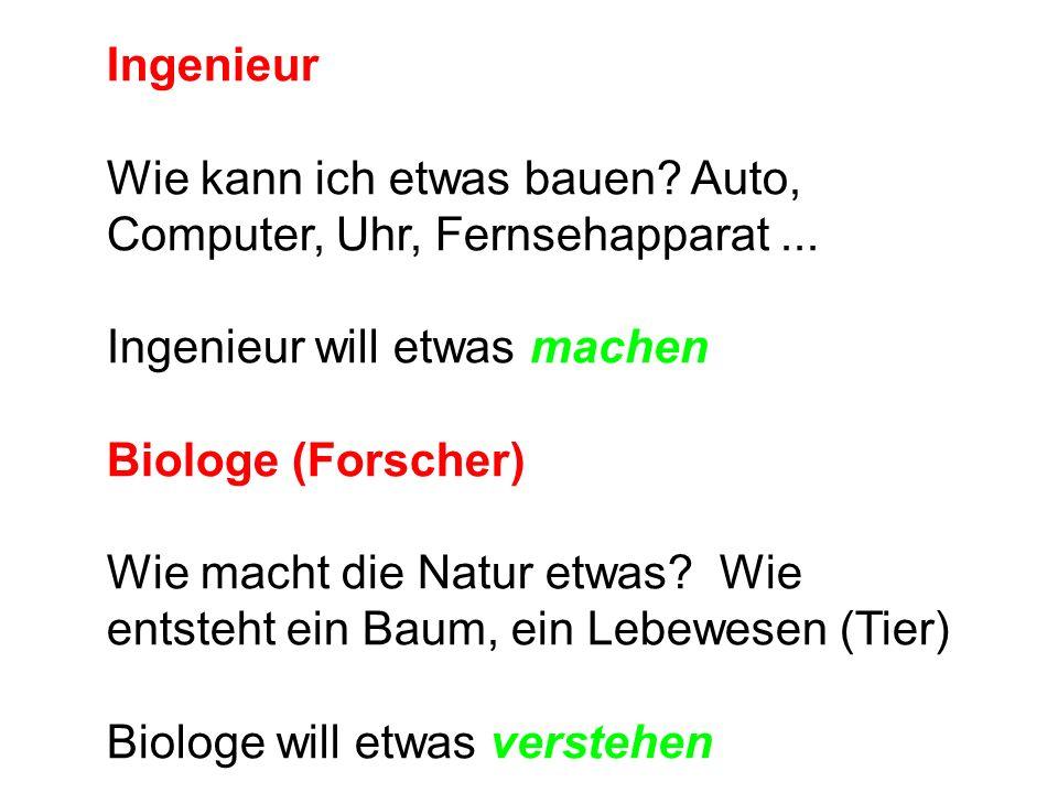 Ingenieur Wie kann ich etwas bauen. Auto, Computer, Uhr, Fernsehapparat...