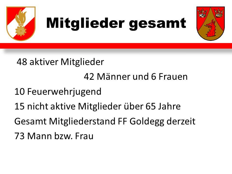 48 aktiver Mitglieder 42 Männer und 6 Frauen 10 Feuerwehrjugend 15 nicht aktive Mitglieder über 65 Jahre Gesamt Mitgliederstand FF Goldegg derzeit 73 Mann bzw.