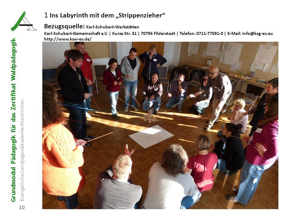 """Grundmodul Pädagogik für das Zertifikat Waldpädagogik Evangelische Landjugendakademie Altenkirchen 10 1 Ins Labyrinth mit dem """"Strippenzieher"""" Bezugsq"""