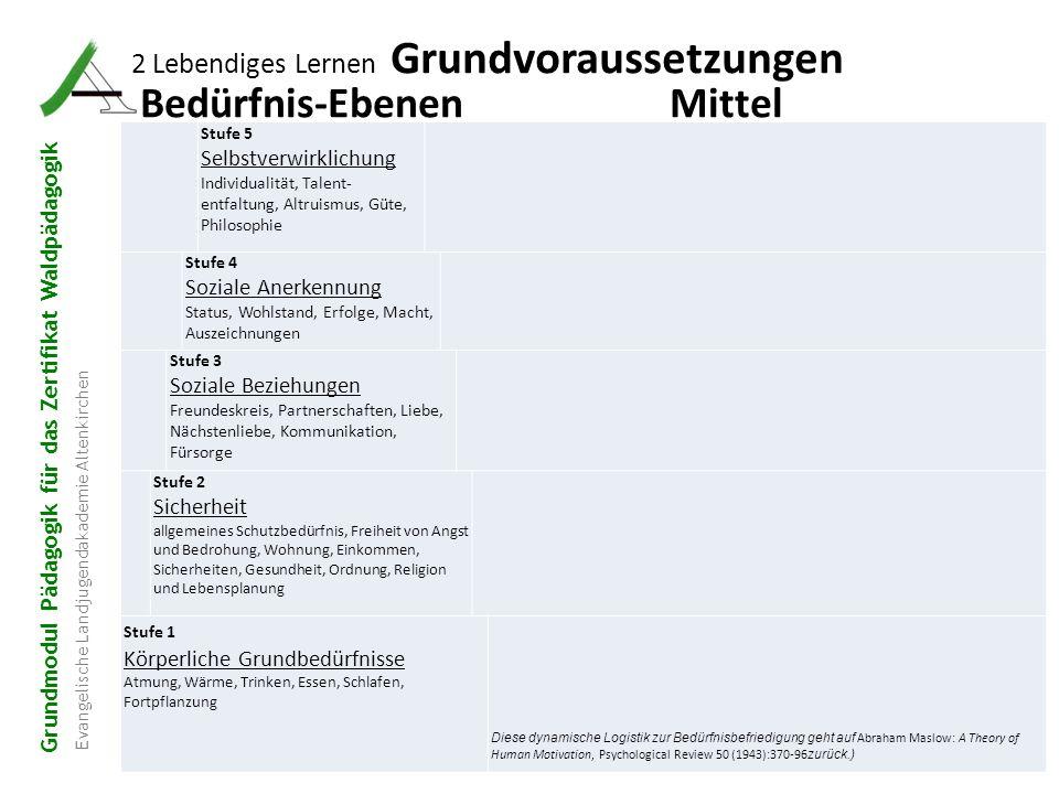 Grundmodul Pädagogik für das Zertifikat Waldpädagogik Evangelische Landjugendakademie Altenkirchen 18 2 Lebendiges Lernen Grundvoraussetzungen Bedürfn