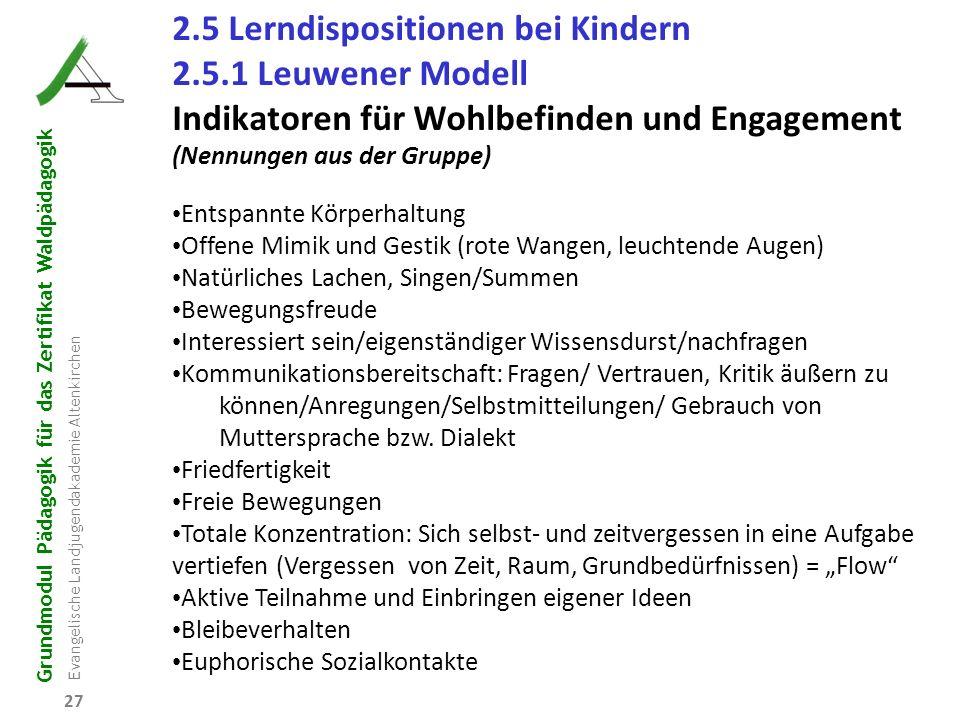 Grundmodul Pädagogik für das Zertifikat Waldpädagogik Evangelische Landjugendakademie Altenkirchen 27 2.5 Lerndispositionen bei Kindern 2.5.1 Leuwener