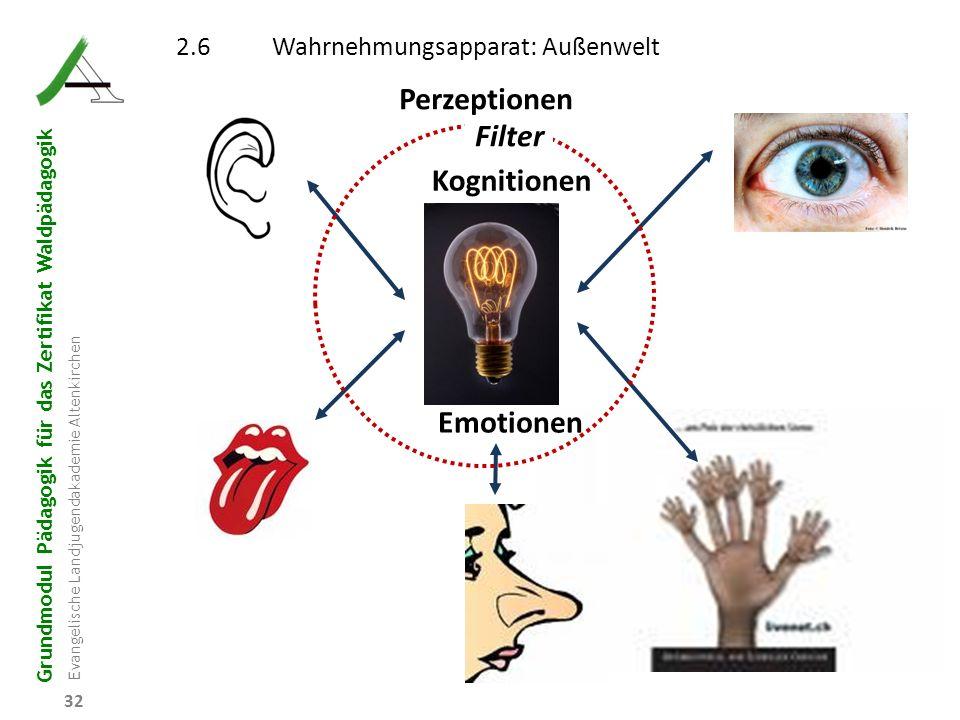 Grundmodul Pädagogik für das Zertifikat Waldpädagogik Evangelische Landjugendakademie Altenkirchen 32 2.6Wahrnehmungsapparat: Außenwelt Kognitionen Fi