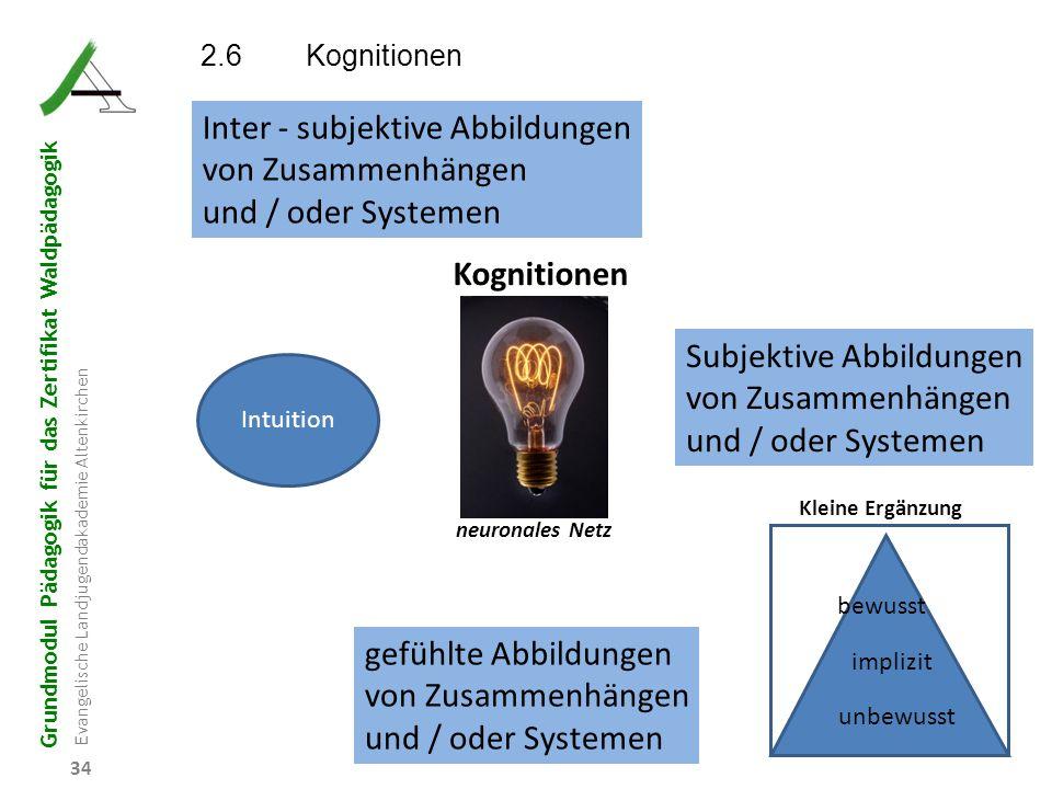 Grundmodul Pädagogik für das Zertifikat Waldpädagogik Evangelische Landjugendakademie Altenkirchen 34 Kognitionen neuronales Netz Subjektive Abbildung
