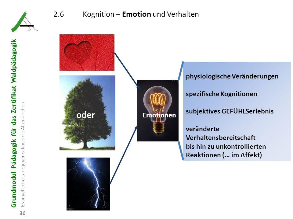Grundmodul Pädagogik für das Zertifikat Waldpädagogik Evangelische Landjugendakademie Altenkirchen 36 Emotionen 2.6Kognition – Emotion und Verhalten o