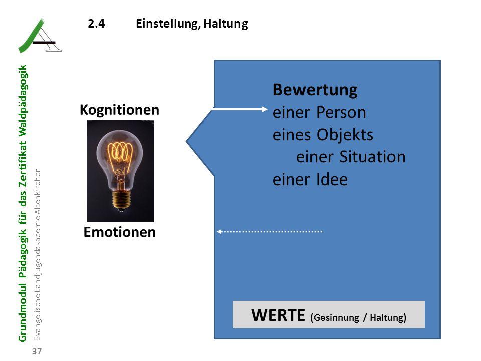 Grundmodul Pädagogik für das Zertifikat Waldpädagogik Evangelische Landjugendakademie Altenkirchen 37 2.4Einstellung, Haltung Kognitionen Emotionen Be