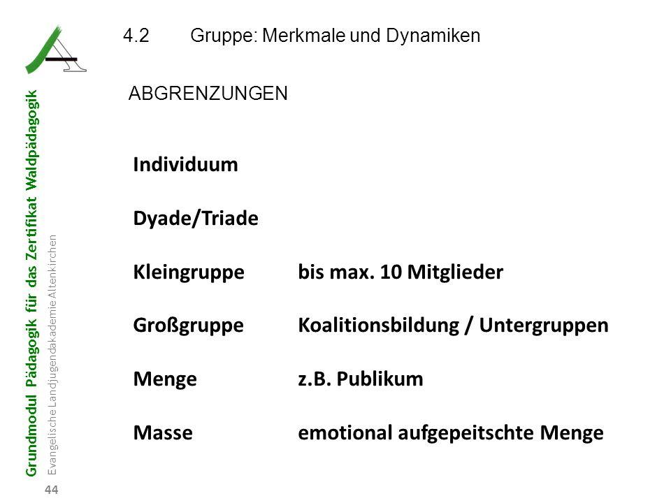 Grundmodul Pädagogik für das Zertifikat Waldpädagogik Evangelische Landjugendakademie Altenkirchen 44 4.2Gruppe: Merkmale und Dynamiken ABGRENZUNGEN I
