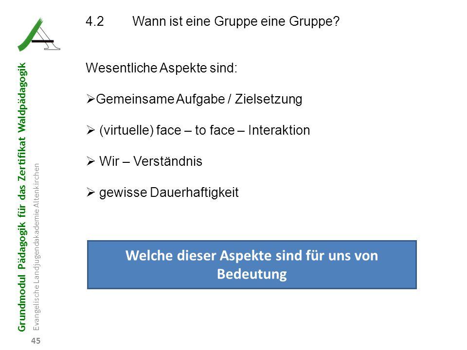 Grundmodul Pädagogik für das Zertifikat Waldpädagogik Evangelische Landjugendakademie Altenkirchen 45 4.2Wann ist eine Gruppe eine Gruppe? Wesentliche