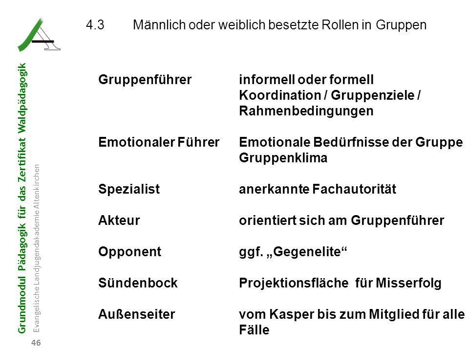 Grundmodul Pädagogik für das Zertifikat Waldpädagogik Evangelische Landjugendakademie Altenkirchen 46 4.3Männlich oder weiblich besetzte Rollen in Gru