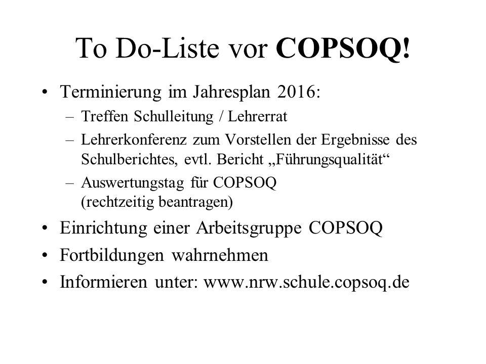 To Do-Liste vor COPSOQ! Terminierung im Jahresplan 2016: –Treffen Schulleitung / Lehrerrat –Lehrerkonferenz zum Vorstellen der Ergebnisse des Schulber
