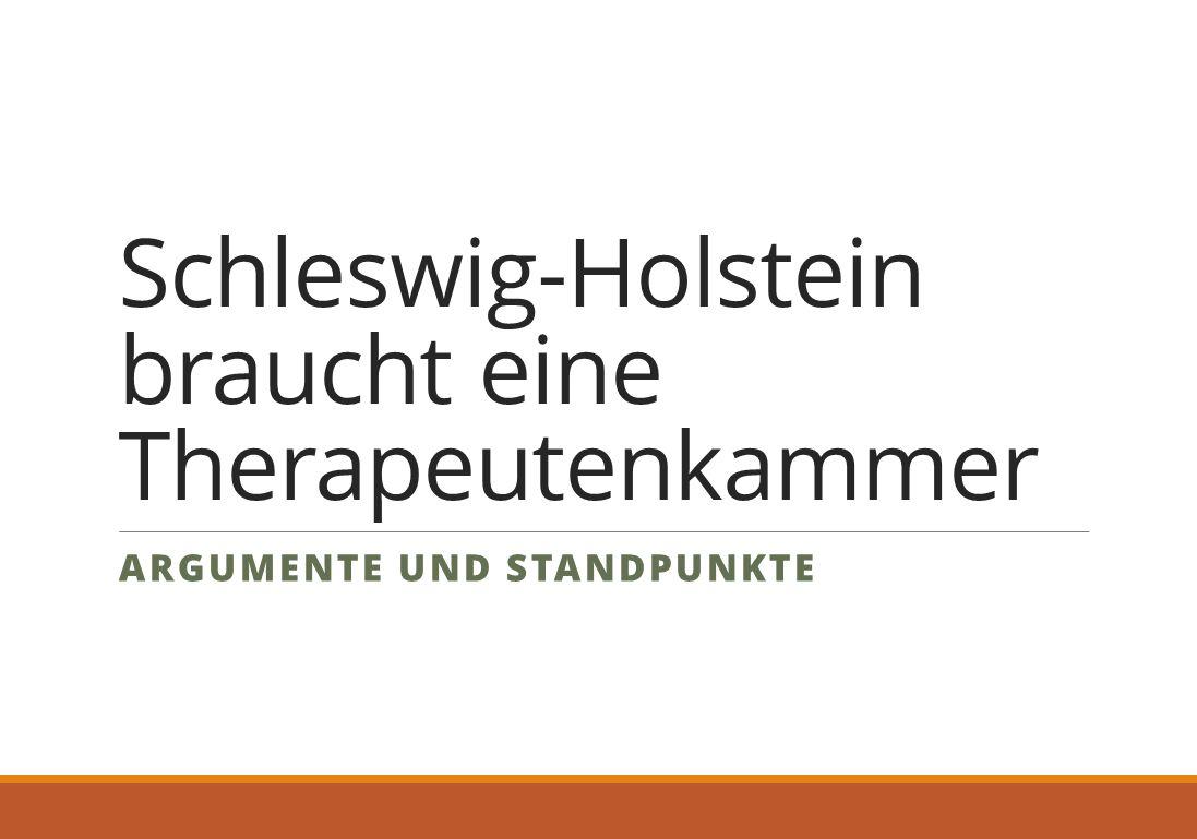 Schleswig-Holstein braucht eine Therapeutenkammer ARGUMENTE UND STANDPUNKTE