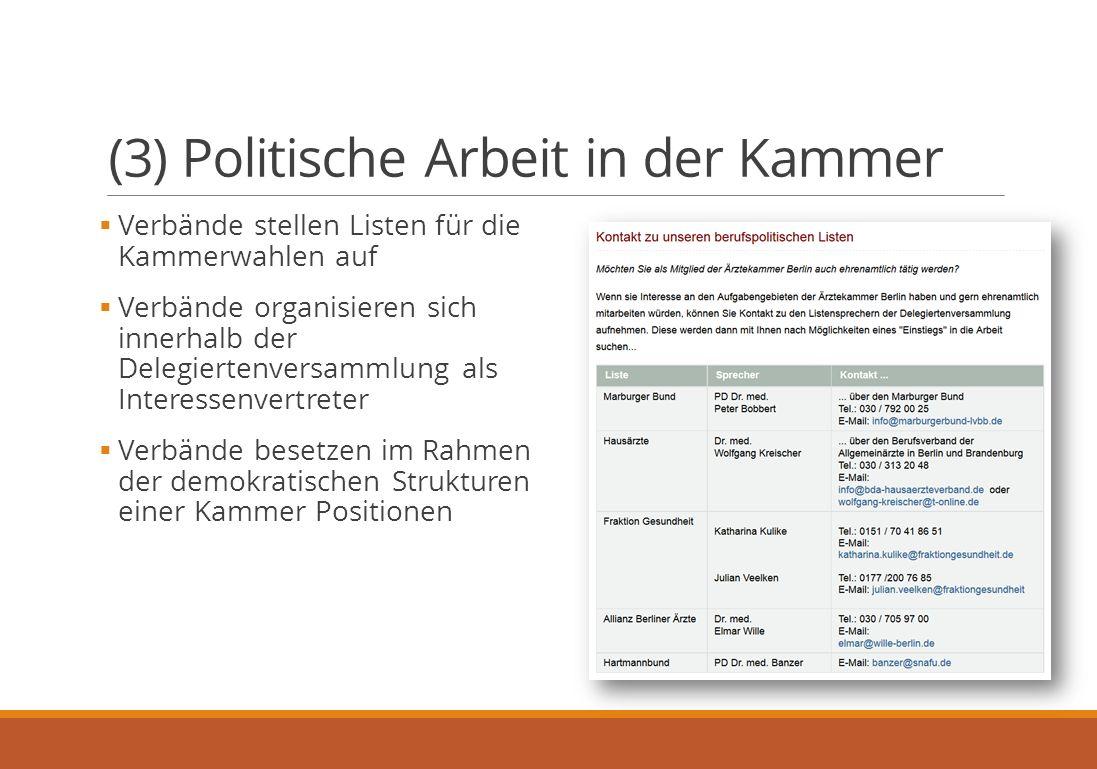 (3) Politische Arbeit in der Kammer  Verbände stellen Listen für die Kammerwahlen auf  Verbände organisieren sich innerhalb der Delegiertenversammlung als Interessenvertreter  Verbände besetzen im Rahmen der demokratischen Strukturen einer Kammer Positionen