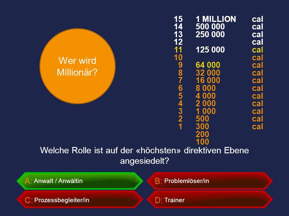 Wer wird Millionär? A:B: C:D: Welche Rolle ist auf der «höchsten» direktiven Ebene angesiedelt? Trainer Problemlöser/in Prozessbegleiter/in Anwalt / A